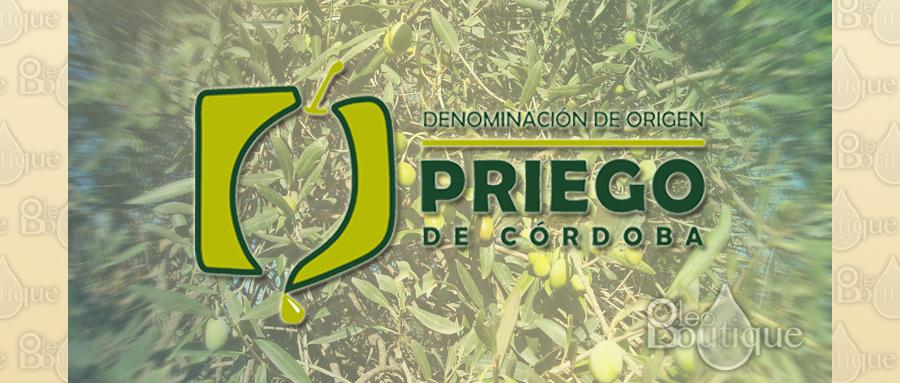 Aceite de oliva denominación de origen Priego de Córdoba